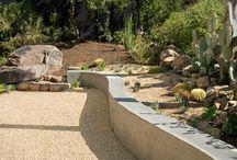 Low Water Garden Ideas!