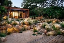 Texas landscape ideas / by Nancy Ewald