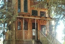 Tree Houses / Treehouses - My favorite place to be. Well only in my dreams. I haven't actually been in one since I was a kid . . . but maybe someday.