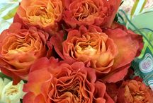 Coral & Peach Wedding Flowers Inspiration / beautiful wedding flowers for a coral wedding