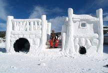 Snow Forts-Anna's Board