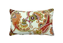 Paisley motifs / by Lindsay
