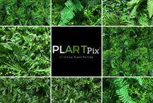 PLARTpix