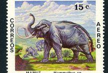 El Salvador Stamps
