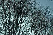 Ritme van de Winter / Opdracht van Tekenen. A1a. Samen met Sanne