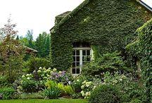 White River Garden