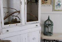 Bird cages / Bird cages