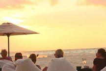 beach bars