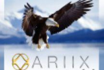 Ariix / Ariix Team in Grand Rapids Michigan