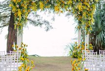 Wedding Colour - Yellow / A versatile colour as its different tones are so far-reaching from striking acid to buttery mellow yellow.  Beautiful when paired with its complimentary colour purple, or greys and sage green.