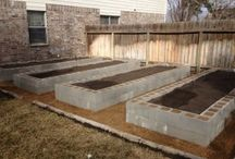 Structure vegetable patches