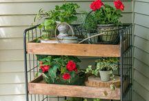 Metal shelf for plant