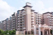 Completed Project By Adhar Infra Holding