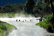 Rotorua dream  holiday plans
