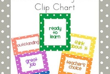 Classroom Management / by Amy May
