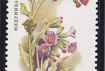 Stamps: Flowers