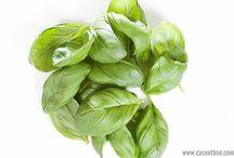 Casentbon : Les herbes / #persil #basilic
