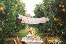 Party Ideas / by Stitchin In Eden (Megan Schroetel)