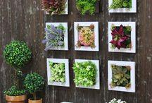 Yapay bitkiler