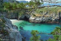 """Scenes from Carmel, California / Carmel-by-the-Sea is a favorite destination. We have a small cottage in the pine trees in Carmel, and it is also the setting of my first novel, """"A Portal in Time."""""""