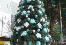 I love Christmas!! / by TaRa PuGh