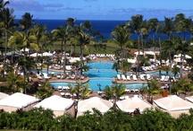 2013 FCCI Conference - The Ritz Carlton Maui, Hawaii