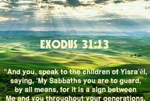 My Quotes & Bible Verses - AWA