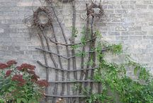 Gardening Ideas / by Jayne Leonard