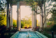 Around Campus / Photos from our beautiful, coastal campus. / by UNCW Office of Admissions
