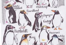 Things we Love / penguins and more