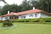 Chikmagalur Estate Houses