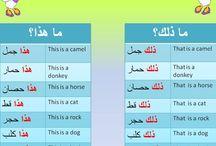 ISLAM & ARABIC LANGUAGE