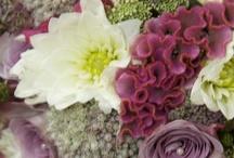 Aimee Hurst Photography - Flowers
