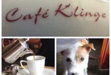 Essen gehen mit Hund / Restauranttipps für Zwei- & Vierbeiner in und um Oldenburg