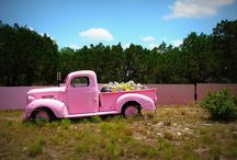Tickled Pink /