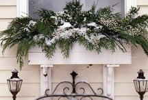 Seasonal Window Box Ideas / by Lisa Serene