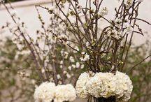Floral arrangements / by Yan Rose