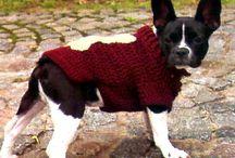 Psie sweterki