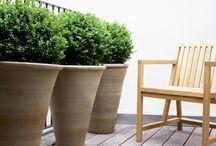 garden & terrace ideas