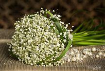 Wedding Flowers / by Catherine Engelman