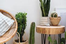 Plants / 0