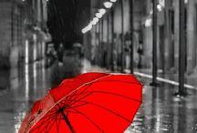 zwart . rood RH