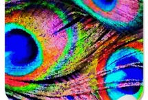 """The Rainbow Connection / Rainbow Connection""""Rainbows are visions, but only illusions, and rainbows have nothing to hide."""" ~ Paul Williams, as sung by Kermit the Frog"""