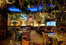 Rainforest resto