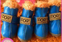 Dog Shoes