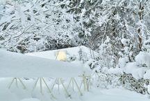 Winterstimmung ums Hotel / Wie schön der Winter bei uns sein kann ...
