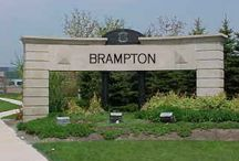 We Love Brampton! / Just returning to Brampton after a few years away...so many changes!!  Living downtown...what a great place to be...so much to do and see within an easy walk!