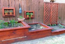 Raised vege gardens