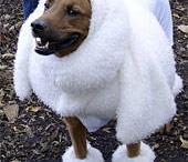 Le Woof