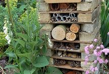 Wild life garden / Ideas for a wildlife garden